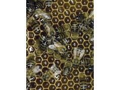 obrázek Včely-0334