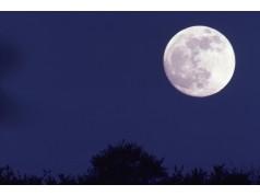 obrázek Měsíc-0368
