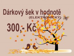 PokojovaDekorace.cz, Dárkové poukazy, Dárkový poukaz E-300, barevná, 20x9cm