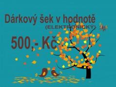 PokojovaDekorace.cz, Dárkové poukazy, Dárkové šeky E-500, barevná, 20x9cm