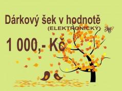 PokojovaDekorace.cz, Dárkové poukazy, Dárkové šeky E-1000, barevná, 20x9cm