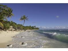 obrázek Pláž-0383
