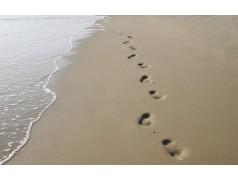 obrázek Pláž-0384