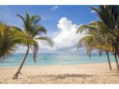 obrázek Pláž-0385