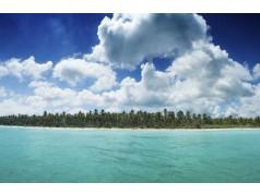 obrázek Pláž-0431