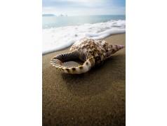 obrázek Moře-0492