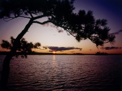 obrázek Jezero-0536