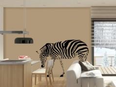 obrázek Zebra-01