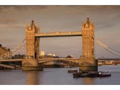obrázek Tower Bridge-0592