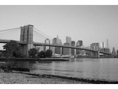 obrázek Město-0595