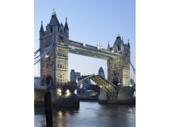 obrázek Tower Bridge-0604