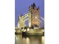 obrázek Tower Bridge-0605