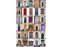 obrázek Dveře-0654