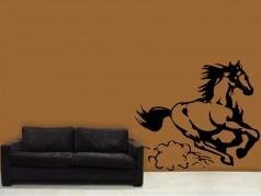 obrázek Kůň-08