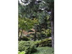 obrázek Park-00068