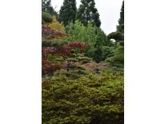 obrázek Park-00071