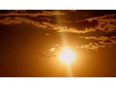 obrázek Slunce-0005-P