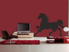 obrázek Kůň 02