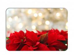 obrázek Vánoční prostírání-100