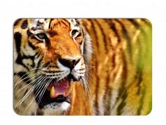 obrázek Prostírání-354 - Tygr