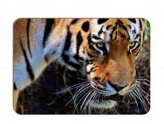 obrázek Prostírání-357 - Tygr