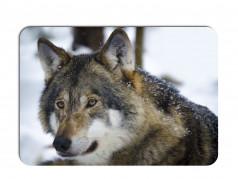 obrázek Prostírání-367 - Vlk