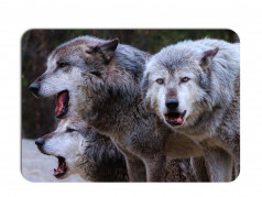 obrázek Prostírání-368 - Vlk