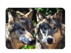 obrázek Prostírání-370 - Vlk