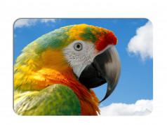 obrázek Prostírání-372 - Papoušek