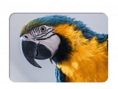 obrázek Prostírání-373 - Papoušek
