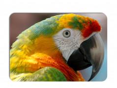 obrázek Prostírání-374 - Papoušek