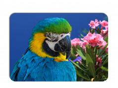 obrázek Prostírání - 376, Papoušek