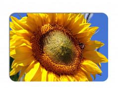 obrázek Prostírání-288 Slunečnice