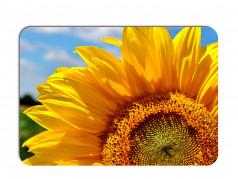 obrázek Prostírání-290 Slunečnice