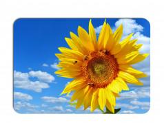 obrázek Prostírání-293 Slunečnice