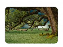 obrázek Prostírání - 286, Strom