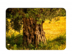 obrázek Prostírání - 296, Strom