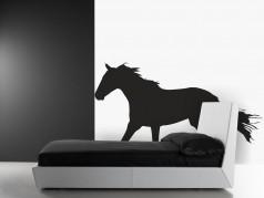 obrázek Kůň na hraně