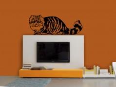 obrázek Kočka-05